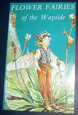 Flower Fairies of the Wayside, Cicely Mary Barker.